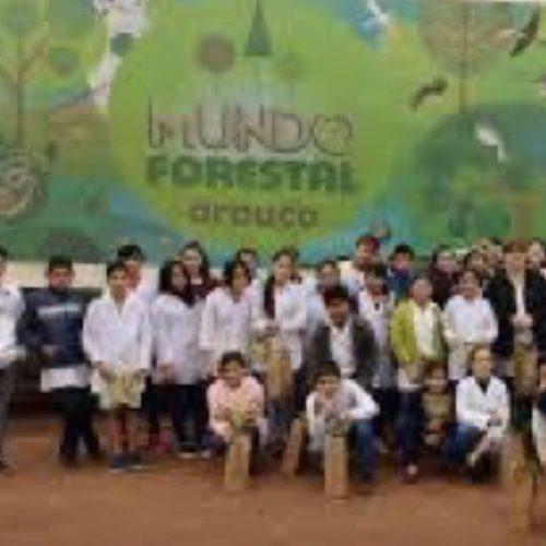 MundoForestal_main